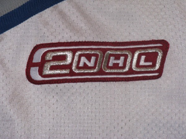 Dingman white Pro Player Gamer NHL 2000 patch